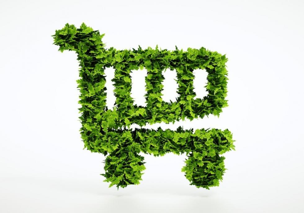 Conheça e pratique os 7 Rs do consumo sustentável