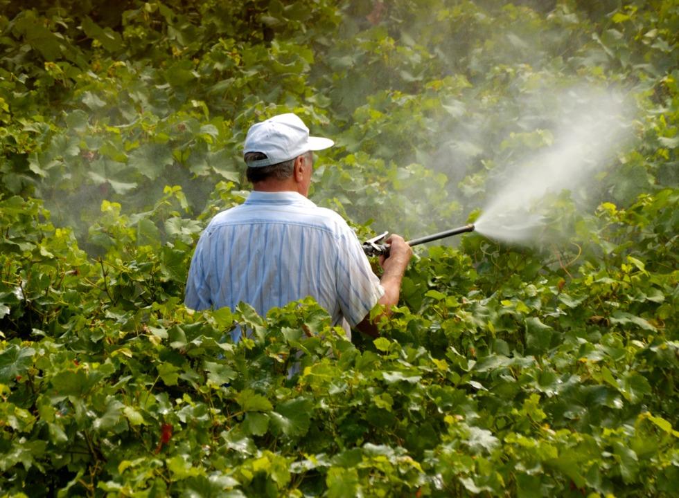 Governo brasileiro facilita uso de agrotóxicos no País