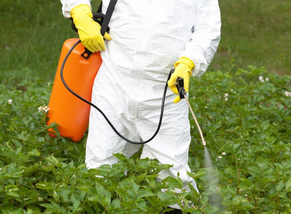 Anvisa deixa mais leve regras para classificação de agrotóxicos