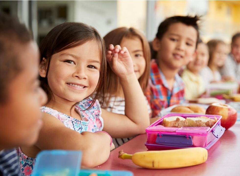 Grupo que regulamenta lei de alimentação saudável no RS é instalado