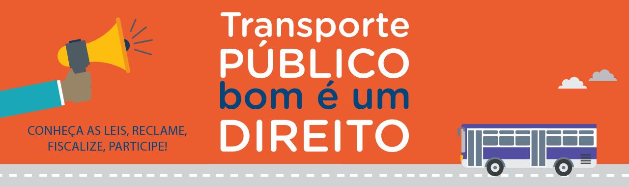 Guia do Usuário de Transporte Público