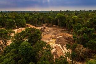 R$ 60 bi de 3 países europeus estão ligados a desmatamento no Brasil
