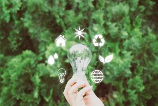 5 atitudes simples para combater o aquecimento global