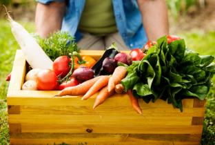 Anvisa estuda regras para tornar informações sobre alimentos transparentes