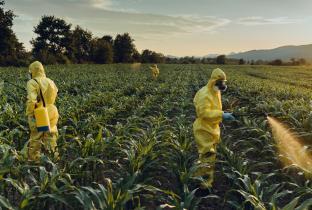 Governo aprova o registro de 19 agrotóxicos