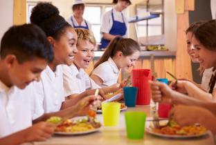Idec cria site para apoiar políticas públicas sobre alimentação
