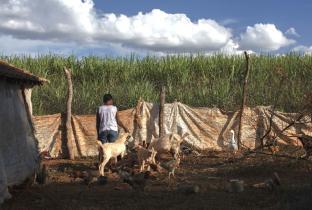 Foto: Marizilda Cruppé para Human Rights Watch